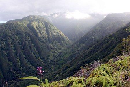 Ridge Hike Maui Hiking The Waihee Ridge Trail